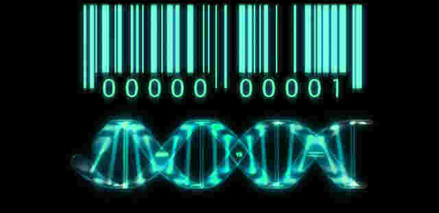 adn code barre